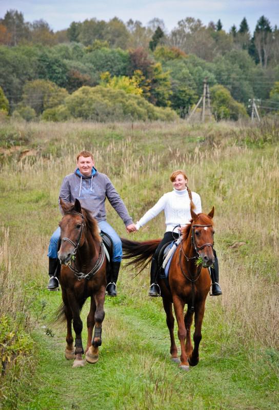 Конные прогулки прокат лошадей в